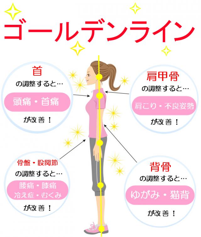 姿勢のゴールデンライン